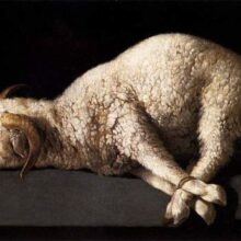 lamb bound